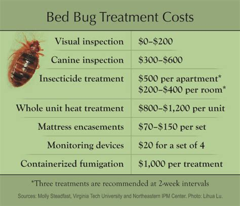 bed bug success stories bed bug success stories 28 images problem solvers bed