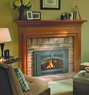 gas burning fireplace inserts fireplace inserts gas inserts pellet inserts wood