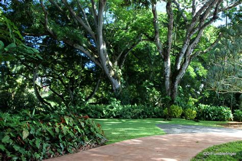 Botanical Gardens Oahu A Tropical Oasis Wahiawa Botanical Garden Oahu Travelgumbo