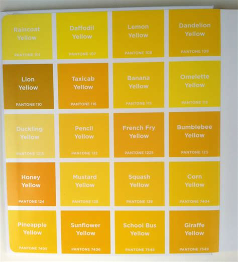 shades of yellow names yellow shades names impressive names of colors in english shades of yellow color shades