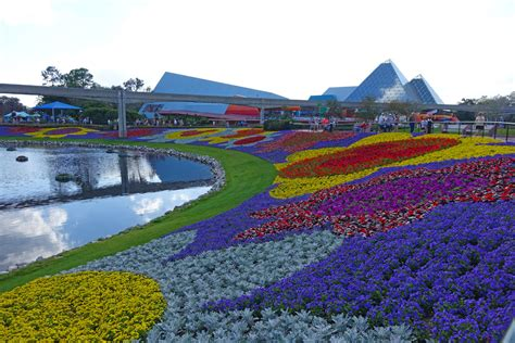 Busch Gardens Crowd Calendar Get Half Busch Gardens And Seaworld Theme Park