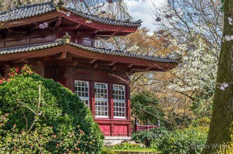garten pflanzen leverkusen japanischer garten archive stefan witte de