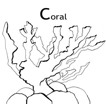 coral coloring pages and facts