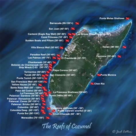 catamaran toucan cancun boats for rent at cozumel island private charters fishing