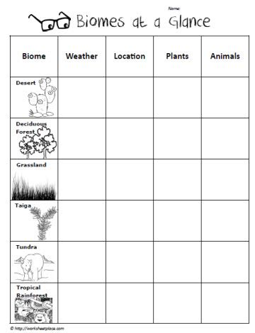 Biomes Of The World Worksheet by Biomes Worksheet Invigorite