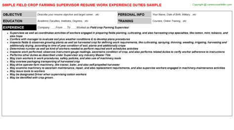 Resume Tips For Non College Grads Resume Tips For Non College Grads Worksheet Printables Site