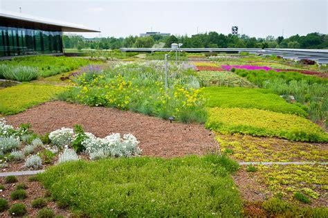 green roofs   easy feat   list  viable