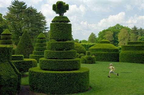 real topiary trees for sale 9 of the most beautiful topiary gardens around the world