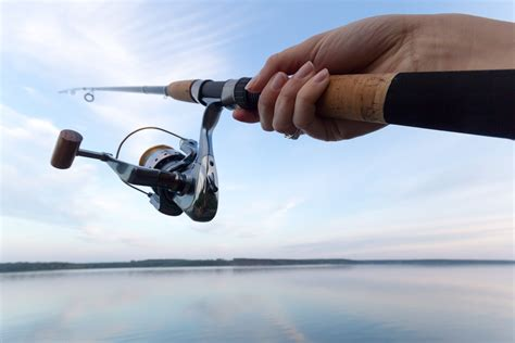best all around best all around fishing rods review 2018 top picks