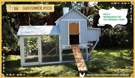backyard chicken coops brisbane chicken coop flooring ideas chicken coops for sale qld