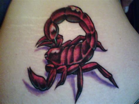 small scorpion tattoo designs 29 colorful scorpio ideas scorpio quotes
