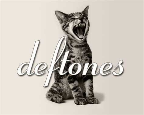 Deftones Band Musik deftones computer wallpapers desktop backgrounds