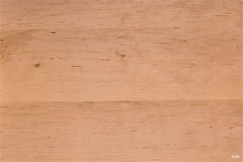 Holzarten Erkennen holzarten erkennen 220 bersicht mit 33 weich und