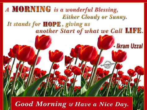 Morning Quotes Morning Quotes