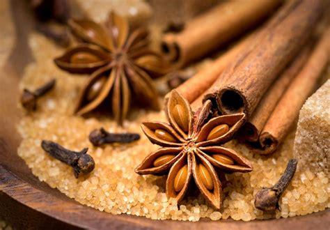 Minyak Atsiri Bunga Cengkeh khasiat bunga cengkeh kembali ke alam