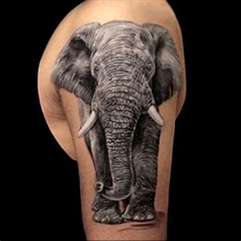 elephant tattoo portrait 25 best ideas about realistic elephant tattoo on pinterest