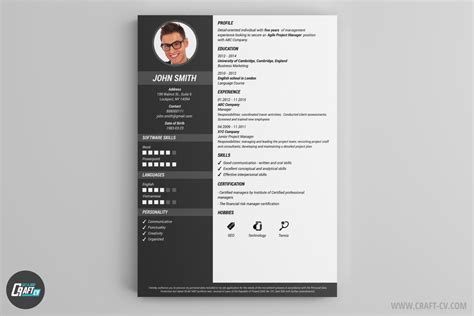 Sample Resumer by Mod 232 Les De Cv Exemples De Cv Cr 233 Er Un Cv Craftcv