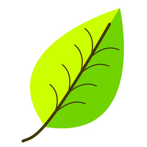 clipart leaf with venation two color