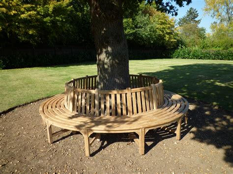 circular tree bench tree bench whole circular