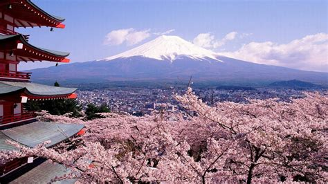 imagenes de japon en otoño 10 motivos esenciales para ir a jap 243 n