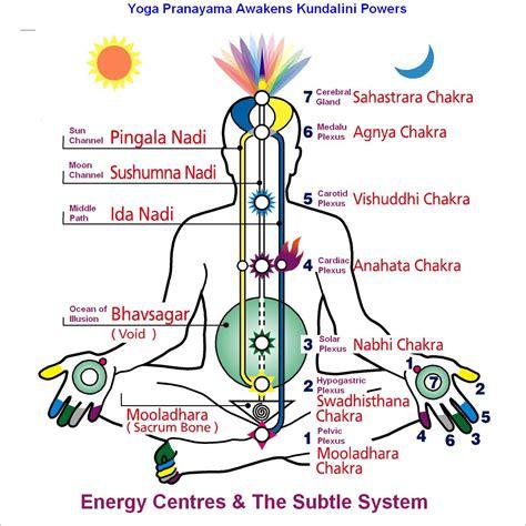 Importance & Benefits of Practicing Pranayama in Yoga