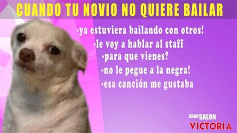 Memes De Chihuahua - meme chihuahua youtube