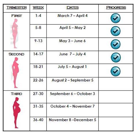 pregnancy timeline gestation period chart pets world