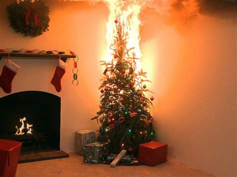 christmas tree fire safety john kenny
