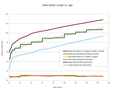 Normal Length by Pediatric Spleen Size Normal Range And Length Percentile