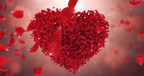 Whirl Rotating Red Rose Flower Petals In love heart