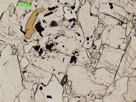 zoisite in thin section clinozoisite