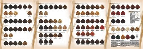 apivita natures hair color nr 7 7 imperity color chart deluxe