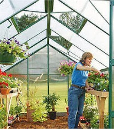 greenhouse gardening a beginners guide to building and growing plants in a greenhouse books 10 greenhouse growing tips for beginners biggies boxers