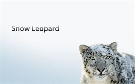 wallpaper for mac os x snow leopard mac os x snow leopard desktop wallpaper