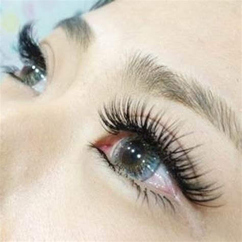 Extension Eyelashes 6 9d Russian Volume Handmade false eyelashes www pixshark images galleries with a bite