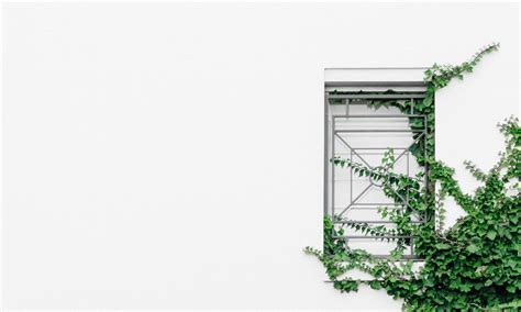 what is minimalism part 2 what being minimalist a minimalist lifestyle is hard minimalism life
