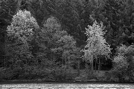paysage noir et blanc, lumières en bretagne   photo robert