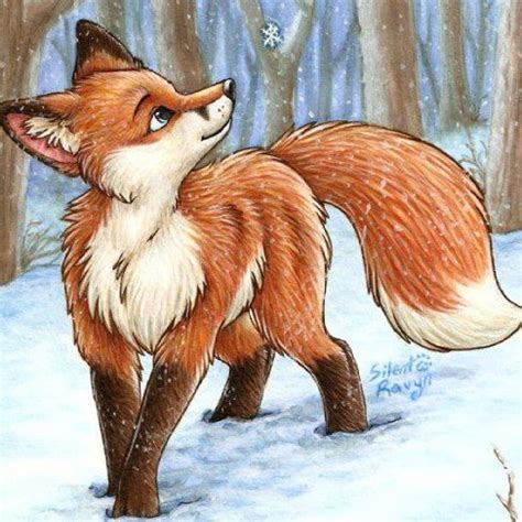 imagenes de zorros a lapiz dibujos de zorros y furrys taringa