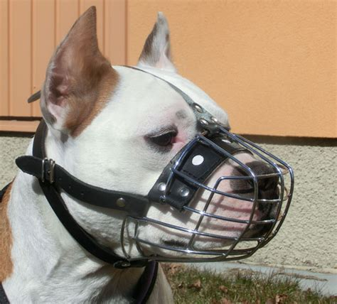 basket muzzle wire basket muzzle