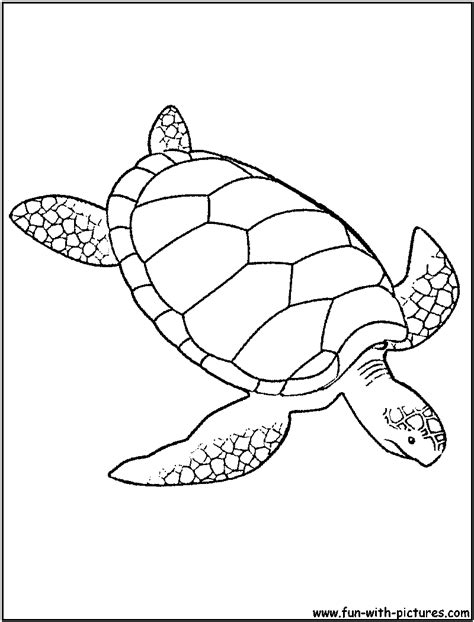 Mosaic Turtle Coloring Page | green sea turtle coloring page sea animals wedding decor