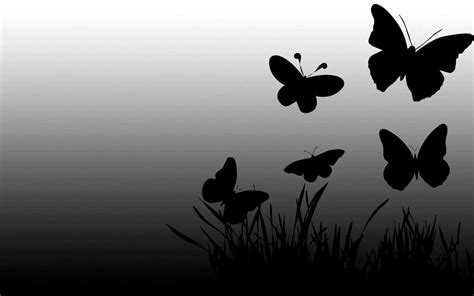 black and white butterfly wallpaper black and white butterfly wallpaper wallpaper bits