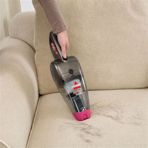vacuum couch sofa maintenance with pets