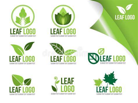 Collection Of Ecology Logo Symbols Organic Green Leaf Vector Design Stock Vector Illustration Ecology Logo Green Design Growth Illustration Vector Illustration Cartoondealer 43259218