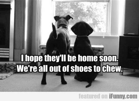 i they will be home soon ifunny