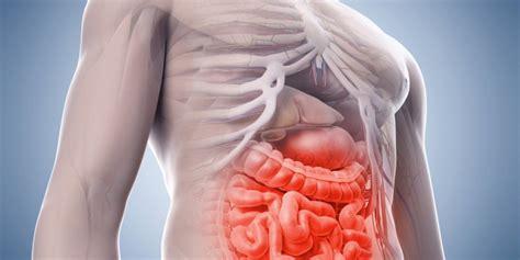 magen darm grippe blut im stuhl magen darm probleme beschwerden im magen darmbereich
