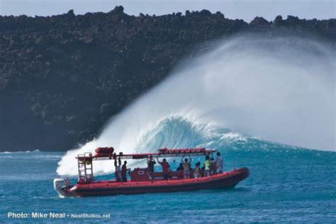 fast boat maui maui hawaii tours discount specials molokini turtle