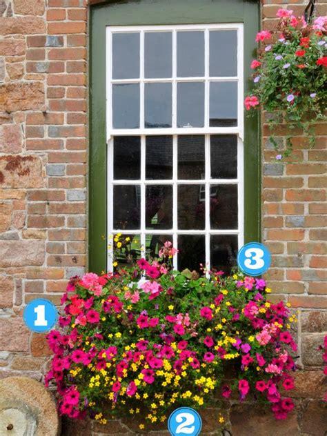 simply stunning summer window boxes hgtv