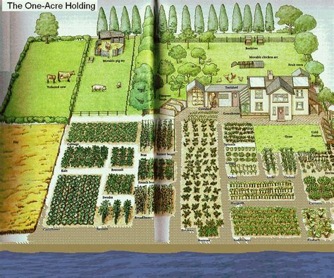 Planning A Small Farm Home Pdf One Acre Spread How Many Homestead Layout
