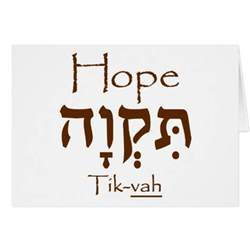 hope in hebrew greeting card zazzle