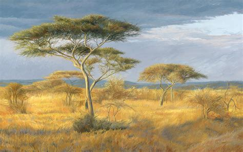 Home Decor Blogs South Africa by African Landscape Painting By Lucie Bilodeau